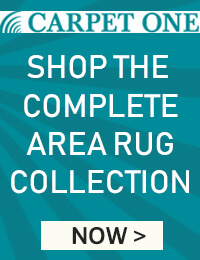 Shop Area Rugs Now